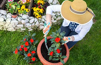 gardening-stress-relief